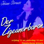 Der Zigeunerbaron (2007)